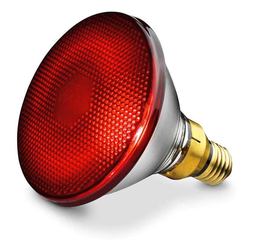 La lampada a raggi infrarossi da 150 Watt è ovviamente inclusa nella confezione